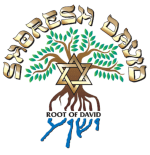 Shoresh David Messianic Synagogues
